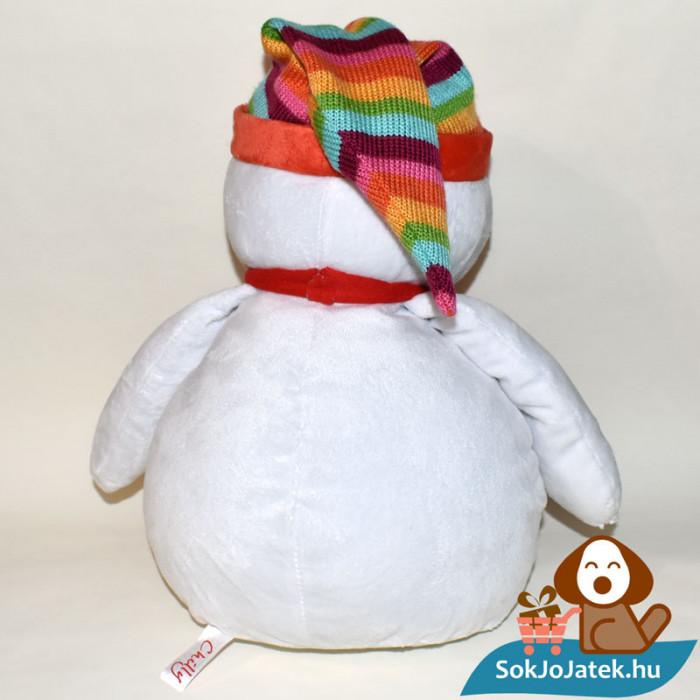 Chilly, szivárvány sapkás hóember hátulról