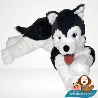 Szibériai husky plüss kutya (Livlig, IKEA), szemből